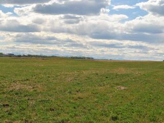 Photo 5: : Rural Mountain View County Land for sale : MLS®# C3641080