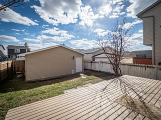 Photo 24: 124 Martinbrook Road NE in Calgary: Martindale Detached for sale : MLS®# A1100901