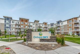Main Photo: 1205 302 Skyview Ranch Drive NE in Calgary: Skyview Ranch Apartment for sale : MLS®# A1133558
