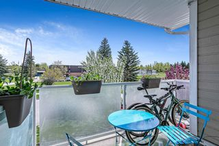Photo 11: 201 3747 42 Street NW in Calgary: Varsity Apartment for sale : MLS®# A1111049