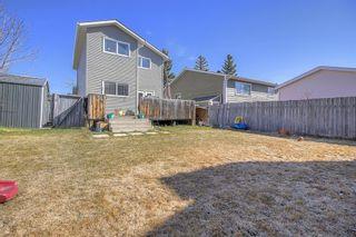 Photo 28: 143 Castleglen Way NE in Calgary: Castleridge Detached for sale : MLS®# A1100351