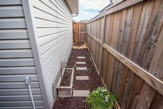 Photo 37: 259 CRANBERRY Place SE in Calgary: Cranston Detached for sale : MLS®# C4214402