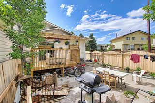 Photo 35: 217 Templemont Drive NE in Calgary: Temple Semi Detached for sale : MLS®# A1120693