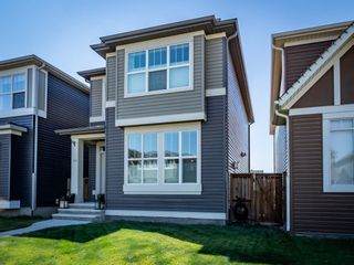 Photo 22: 139 Evansborough Crescent NW in Calgary: Evanston Detached for sale : MLS®# A1138721