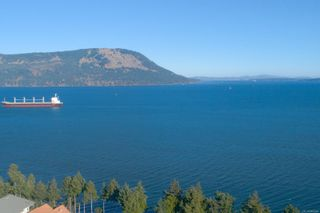 Photo 50: 3564 Ocean View Cres in Cobble Hill: ML Cobble Hill House for sale (Malahat & Area)  : MLS®# 860049