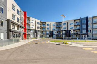 Main Photo: 112 8530 8A Avenue SW in Calgary: West Springs Apartment for sale : MLS®# A1145219