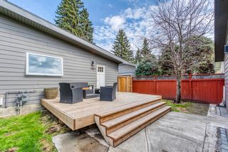 Photo 44: 621 Agate Crescent SE in Calgary: Acadia Detached for sale : MLS®# A1109681