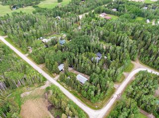 Photo 12: 19 29415 Rge Rd 52: Rural Mountain View County Detached for sale : MLS®# A1118455