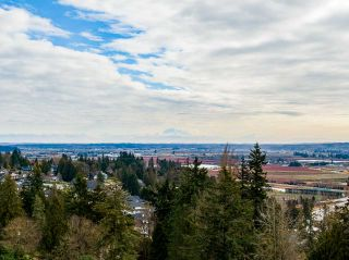 "Photo 7: 14287 55A Avenue in Surrey: Sullivan Station House for sale in ""PANORAMA RIDGE"" : MLS®# R2539512"
