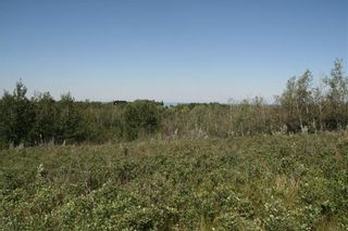 Photo 3: 4 VIEW Place in Rural Stettler No. 6, County of: Rural Stettler County Land for sale : MLS®# A1066068