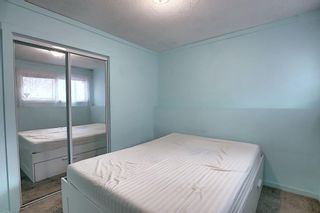 Photo 24: 1209 53B Street SE in Calgary: Penbrooke Meadows Row/Townhouse for sale : MLS®# A1042695