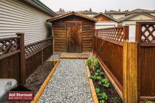 "Photo 56: 24113 102 Avenue in Maple Ridge: Albion House for sale in ""Homestead"" : MLS®# R2499816"
