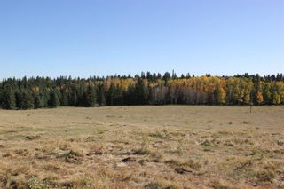 Photo 16: ON Township Road 355A: Rural Red Deer County Land for sale : MLS®# A1039276