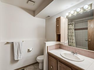 Photo 27: 64 Sanderling Hill in Calgary: Sandstone Valley Detached for sale : MLS®# A1090715
