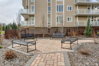 Photo 4: 203 3737 42 Street NW in Calgary: Varsity Apartment for sale : MLS®# A1105296