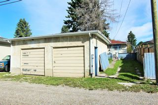 Photo 24: 254 Dovercliffe Way SE in Calgary: Dover Detached for sale : MLS®# A1146227
