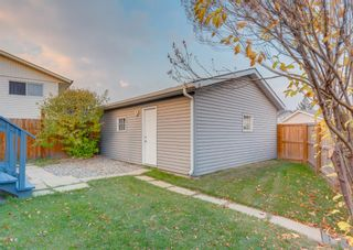 Photo 42: 205 RUNDLESON Place NE in Calgary: Rundle Detached for sale : MLS®# A1153804