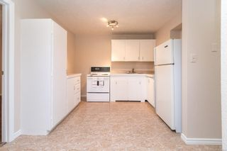 Photo 17: 3871 Rowland Rd in : SW Tillicum House for sale (Saanich West)  : MLS®# 886044