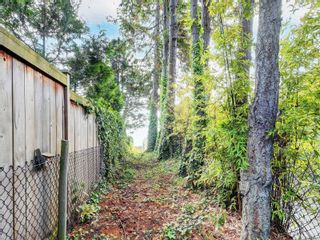 Photo 8: 8369 Lochside Dr in Central Saanich: CS Saanichton House for sale : MLS®# 877182