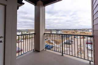 Photo 26: 420 5370 CHAPPELLE Road in Edmonton: Zone 55 Condo for sale : MLS®# E4254577