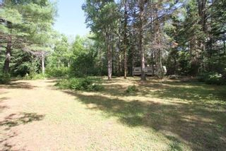 Photo 4: 300 Pinery Road in Kawartha Lakes: Rural Somerville Property for sale : MLS®# X4840235