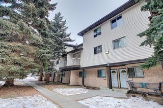 Main Photo: 64 3705 Fonda Way SE in Calgary: Forest Heights Apartment for sale : MLS®# A1065357