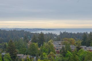 Photo 27: 3360 Ravenwood Rd in : Co Triangle House for sale (Colwood)  : MLS®# 874060