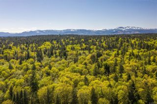 Photo 82: Lot 2 Eagles Dr in : CV Courtenay North Land for sale (Comox Valley)  : MLS®# 869395