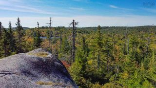 Photo 2: 2014 Myra Road in Porters Lake: 31-Lawrencetown, Lake Echo, Porters Lake Vacant Land for sale (Halifax-Dartmouth)  : MLS®# 202125407