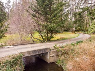 Photo 19: 4365 Munster Rd in : CV Courtenay West House for sale (Comox Valley)  : MLS®# 872010