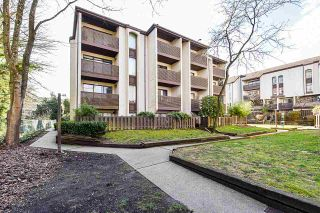 "Photo 25: 403 365 GINGER Drive in New Westminster: Fraserview NW Condo for sale in ""Fraser Mews"" : MLS®# R2542323"