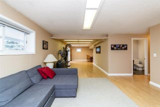Photo 39: 26 Windermere Crescent: St. Albert House for sale : MLS®# E4241763