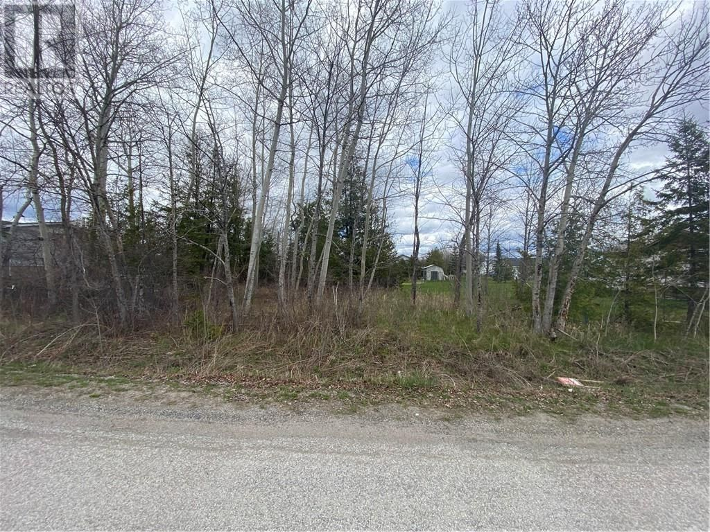 Main Photo: 60 Blake Street in Little Current: Vacant Land for sale : MLS®# 2095088