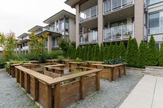"""Photo 20: 5483 LOUGHEED Highway in Burnaby: Parkcrest Townhouse for sale in """"Seasons"""" (Burnaby North)  : MLS®# R2620234"""