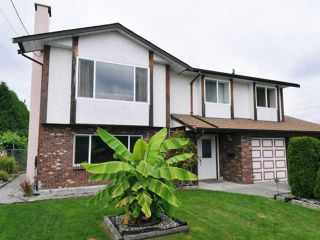 Photo 1: 11975 230TH Street in Maple Ridge: East Central House for sale : MLS®# V993544