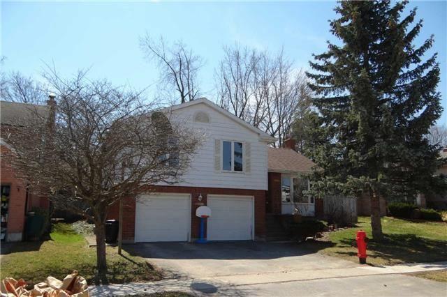 Main Photo: 46 Goldgate Crest: Orangeville House (Sidesplit 3) for sale : MLS®# W3472485