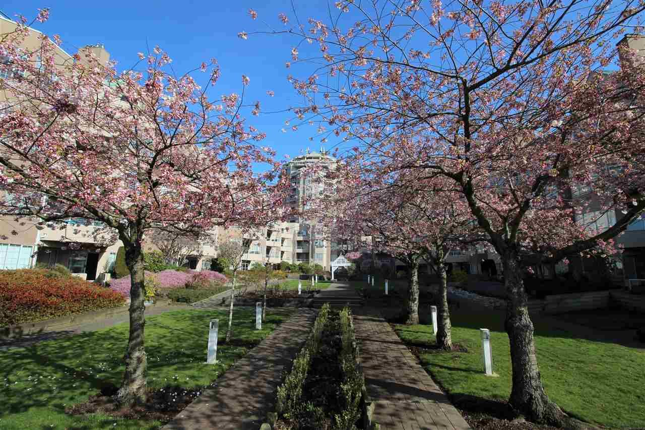 """Photo 31: Photos: 118 1150 QUAYSIDE Drive in New Westminster: Quay Condo for sale in """"WESTPORT"""" : MLS®# R2559746"""