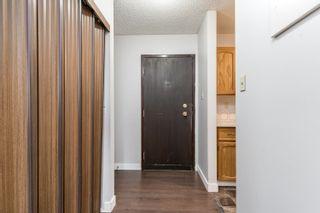 Photo 5:  in Edmonton: Zone 29 Condo for sale : MLS®# E4261180