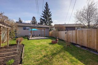 Photo 26: 4115 DOVERBROOK Road SE in Calgary: Dover Detached for sale : MLS®# C4295946