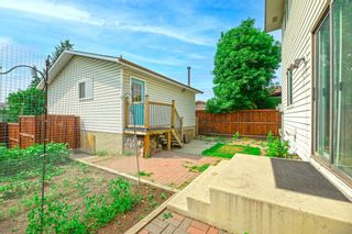 Photo 41: 639 TEMPLESIDE Road NE in Calgary: Temple Detached for sale : MLS®# A1136510