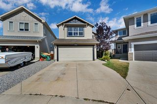 Photo 47: 154 SAGEWOOD Landing SW: Airdrie Detached for sale : MLS®# A1028498