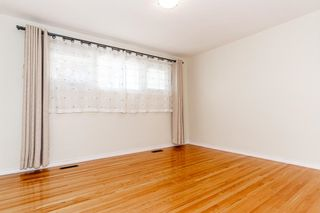Photo 14: 9213 162 Street in Edmonton: Zone 22 House for sale : MLS®# E4264714