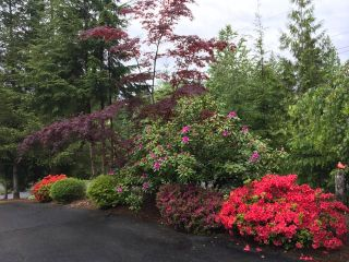 "Photo 25: 12650 261 Street in Maple Ridge: Websters Corners House for sale in ""Whispering Falls"" : MLS®# R2469442"