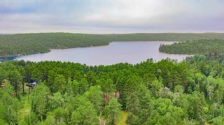 Photo 32: LK283 Summer Resort Location in Boys Township: Retail for sale : MLS®# TB212151