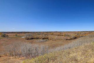 Photo 37: 14308 Parkside Drive SE in Calgary: Parkland Detached for sale : MLS®# A1144542