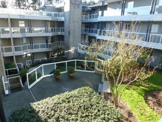 Photo 19: 308 2733 ATLIN PLACE in Coquitlam: Coquitlam East Condo for sale : MLS®# R2039026