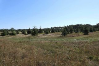 Photo 2: Hwy 622 RR 15: Rural Leduc County Rural Land/Vacant Lot for sale : MLS®# E4261453
