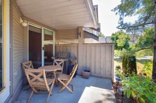 """Photo 36: 405 13900 HYLAND Road in Surrey: East Newton Townhouse for sale in """"HYLAND GROVE"""" : MLS®# R2605860"""