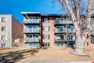 Photo 3: 404 120 24 Avenue SW in Calgary: Mission Apartment for sale : MLS®# A1079776