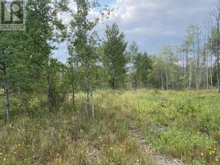 Photo 7: Lot 100 BLOCK DRIVE in 108 Mile Ranch: Vacant Land for sale : MLS®# R2623568